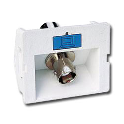 Siemon Angled Coax CT Coupler with 1 BNC Adapter