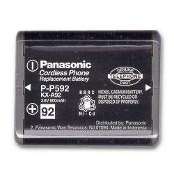 Panasonic Replacement Battery for IBM 4900