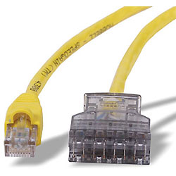 Hubbell Category 5e 110 Factory Terminated Patch Cord