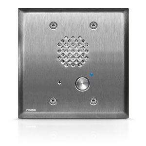 Viking Double Gang Entry Phone with LED