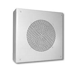 Avaya Square Indoor Box Speaker