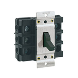 Leviton Double-Pole Front-Wired AC Manual Motor Starting Switch