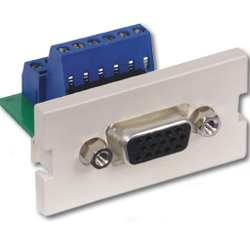 Hubbell Infin-e-Station Module - 15-Pin Female/Screw Terminal SVGA